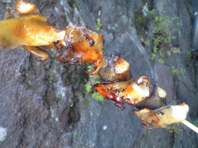 まぐろコロッケ と ツボ貝