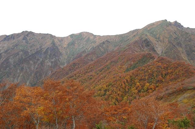 Nikon D70 + AF-S DX NIKKOR 18-55mm F3.5-5.6 G VR @谷川岳