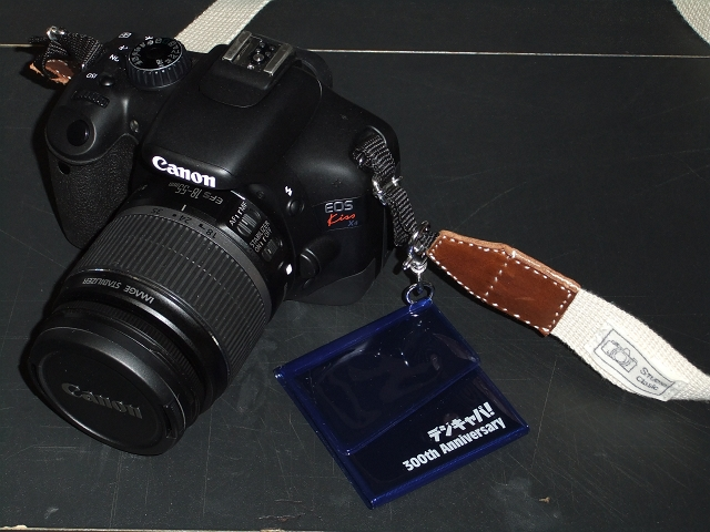 デジキャパ!特製SDメモリーカードケース