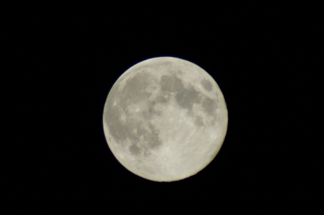 後(のち)の月